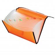 Portadocumenti in PP a 13 Scomparti cm. 33x24 Colori Assortiti - Lebez 2514-ASS