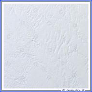 Cartoncino bianco A4 250gr Goffrato Copertine 100pz Fellowes 5370104