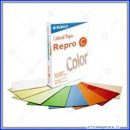 Risma Carta 200g bianca A4 Colored Paper Repro C da 250 Fogli Burgo 139.433