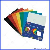 Carta magnetica colorata formato A5 in confezione da 10 fogli assortiti Wiler MA10A5