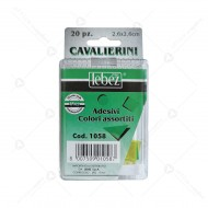 Cavalierini Adesivi PVC formato 2,6 x 2,6 cm colori assortiti segnapagine in blister da 20 Pezzi Lebez 1058