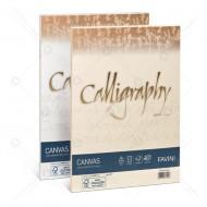 Carta Canvas Bianco A4 200g Calligraphy 50 Fogli Cartoncino Marcato Naturale Favini A570414