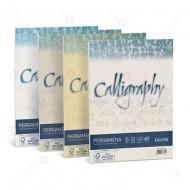 Carta Pergamena Oro A4 190g Calligraphy 50 Fogli cartoncino nuvolato dal sapore antico Favini A69W084