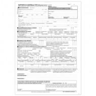Rapporto di Controllo di Efficienza Energetica All. 3A (Tipo 1A Gruppi Termici) - Gruppo Buffetti 8844T1A00