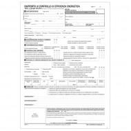 Rapporto di Controllo di Efficienza Energetica All 2 (Tipo 1 gruppi termici) - Gruppo Buffetti 8846T1000