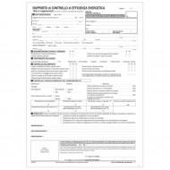 Rapporto di Controllo di Efficienza Energetica All 2 (Tipo 4 cogeneratori) - Gruppo Buffetti 8846T4000