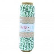 Cordino in cotone Colore Verde effetto Metallic rocchetto da 27 metri - Wiler TWL03
