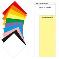 Carta colorata 160g 38X100mm 100 fogli 10 colori per TAG01 / TAG02 - Wiler CP160A38
