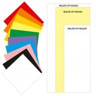 Carta colorata 160g 50.5x125mm 100 fogli 10 colori per TAG01 / TAG02 - Wiler CP160A50