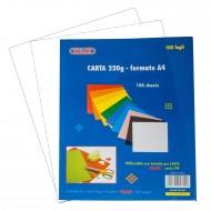 Carta Colorata colore Bianco 220g Formato A4 100 fogli - Wiler CP220C01